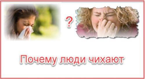 Почему люди чихают?
