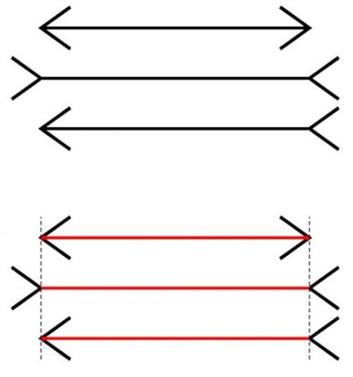 Иллюзия Мюллера-Лайера