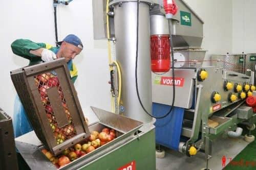 Производство соков: сырьё